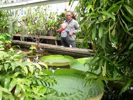 botanic5.JPG