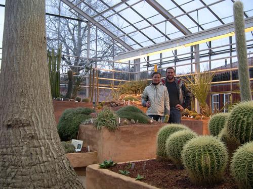 cacti_greenhouse.jpg