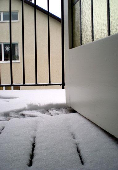 snow2009.jpg