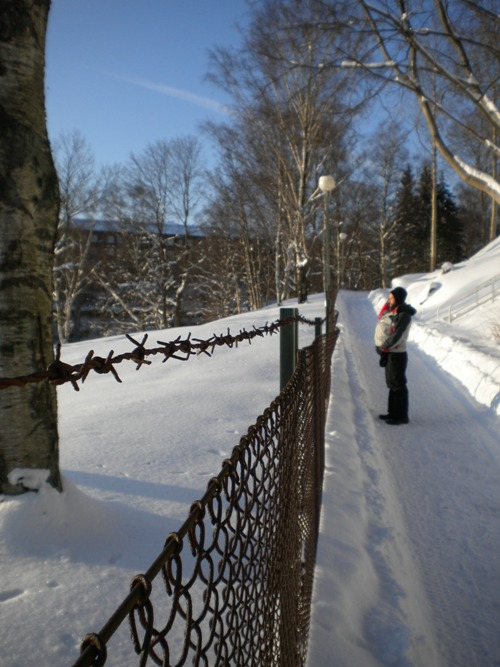 snow_feb_10.jpg
